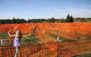 Hayvan Çiftliği Plastik Çit Kullanımı